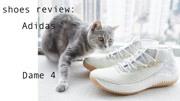 不負責球鞋評測:Dame 4