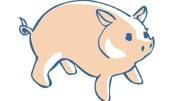 好的名字影响一生!给猪宝宝取一个有福气的名字#萌宝起名 #起名 #取名 #猪年