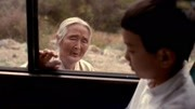 三分钟看完豆瓣高分电影《无声婚礼》,结个婚把全家性命都搭上!